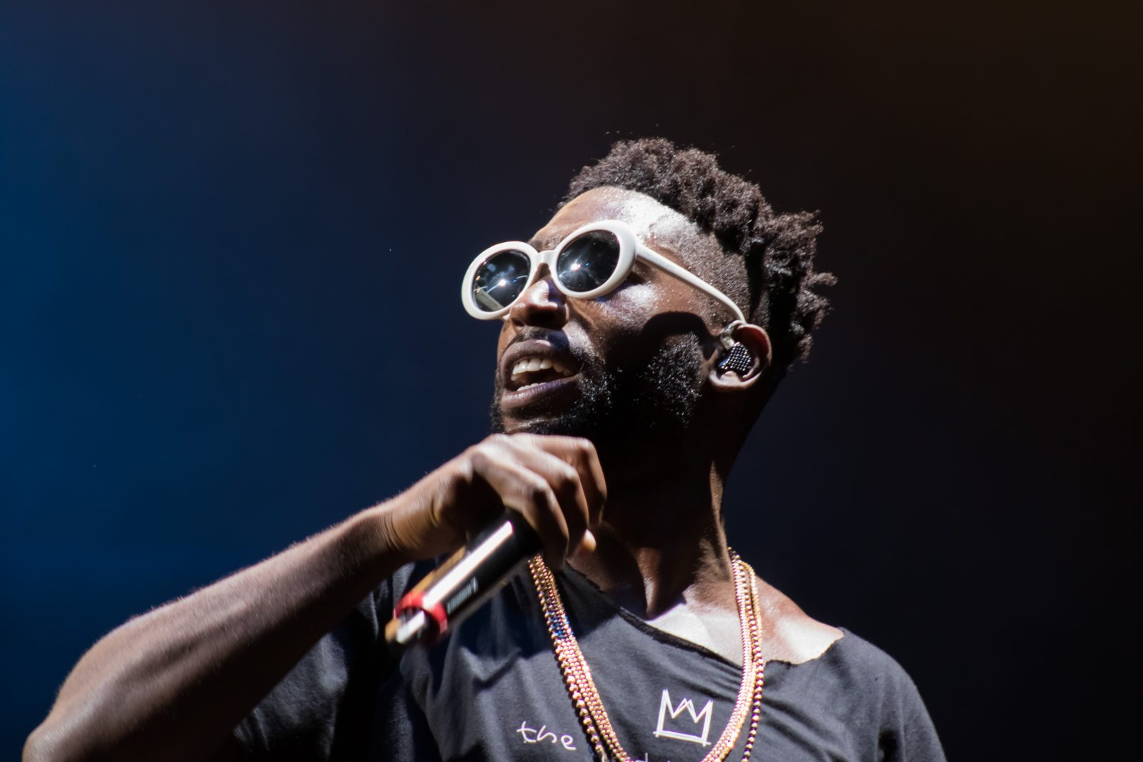 Tinie Tempah, See You In The Fields - Who's Calling Me to Kendal Calling